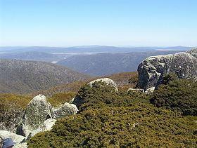 Mount Ginini httpsuploadwikimediaorgwikipediacommonsthu