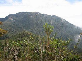 Mount Tahan httpsuploadwikimediaorgwikipediacommonsthu