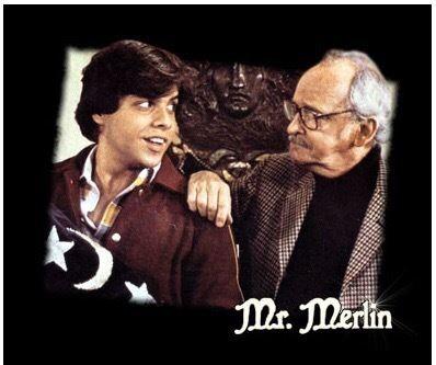Mr. Merlin Retro TV Mr Merlin Bonepickingcom