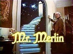 Mr. Merlin httpsuploadwikimediaorgwikipediaenthumb7