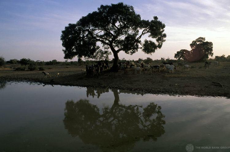 Muchinga Province Beautiful Landscapes of Muchinga Province