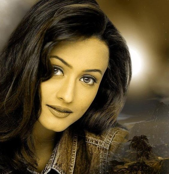 Namrata Shirodkar Namrata Shirodkar Pictures Photos Wallpapers