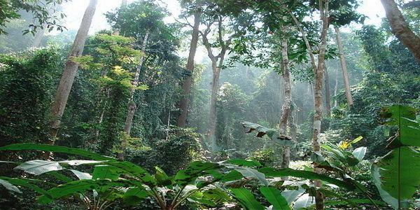 Namtok Mae Surin National Park Namtok Mae Surin National Park Attractions in Mae Hong Son