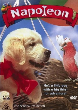 Napoleon (1995 film) Kiwis Angels Napoleon movie with galah parrot