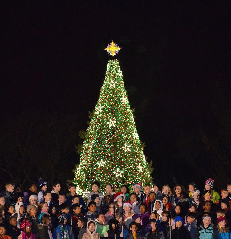National Christmas Tree (United States)