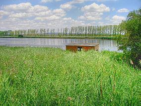 Nature Reserve Banks of Castronuño httpsuploadwikimediaorgwikipediacommonsthu