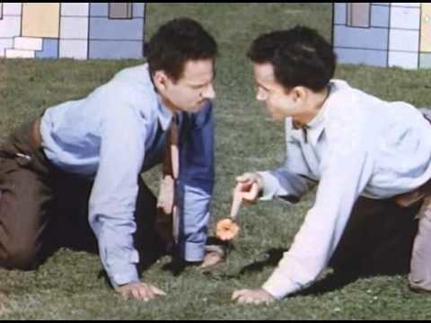 Neighbours (1952 film) Norman McLaren Neighbours YouTube