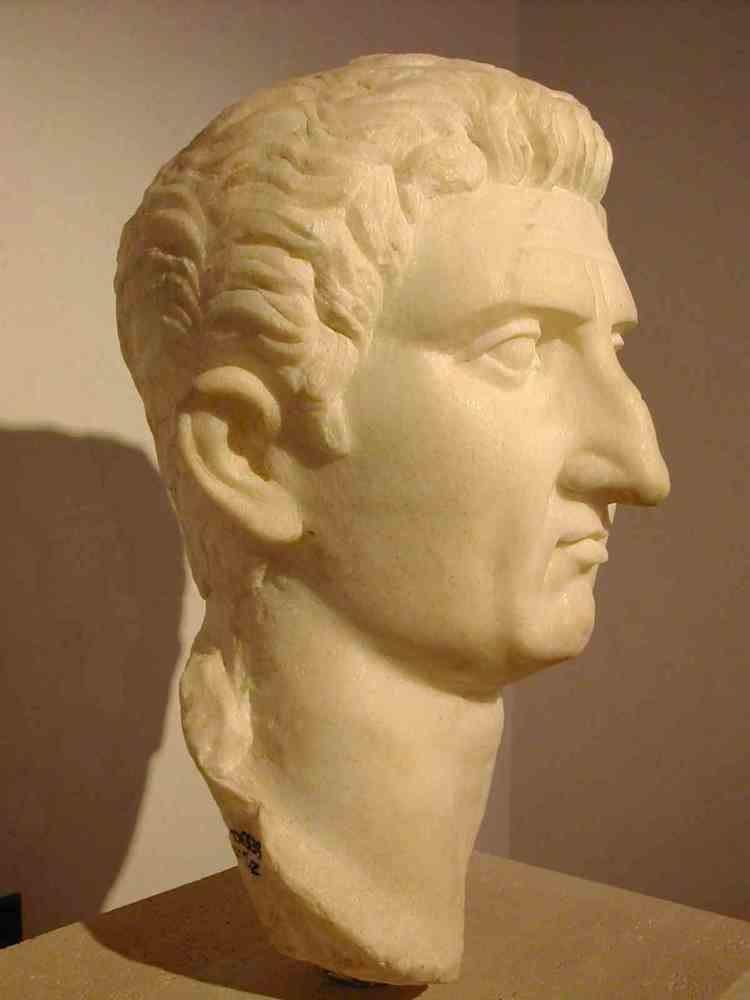 Nerva Roman Portrait Sculptures Nerva to Commodus