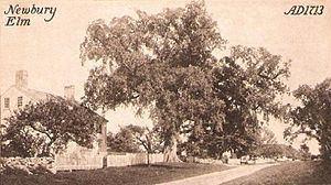 Newbury, Massachusetts httpsuploadwikimediaorgwikipediacommonsthu