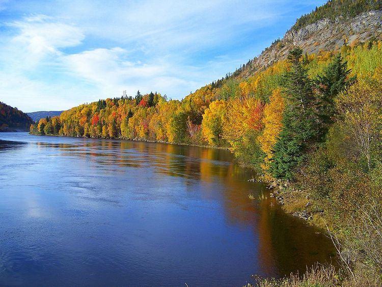 Newfoundland (island)