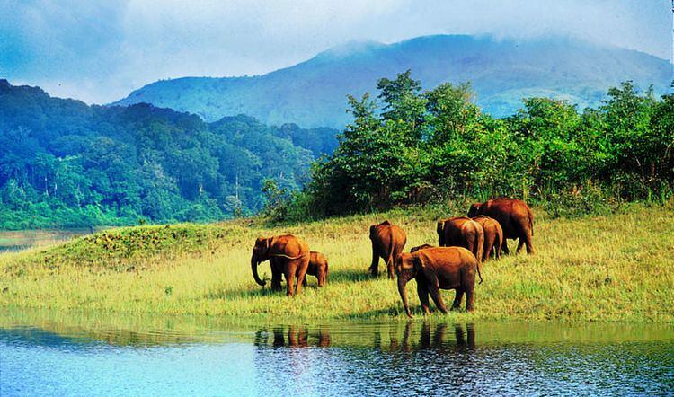 Neyyar Wildlife Sanctuary Neyyar Wildlife Sanctuary