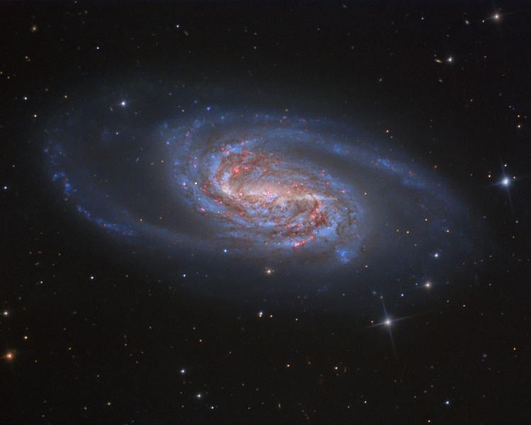 NGC 2903 httpsapodnasagovapodimage1504N2903Jewelof