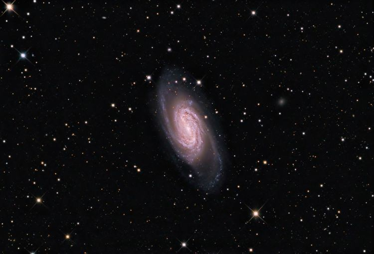 NGC 2903 I Could39a Been A Contender NGC 2903 by Warren Keller Universe Today