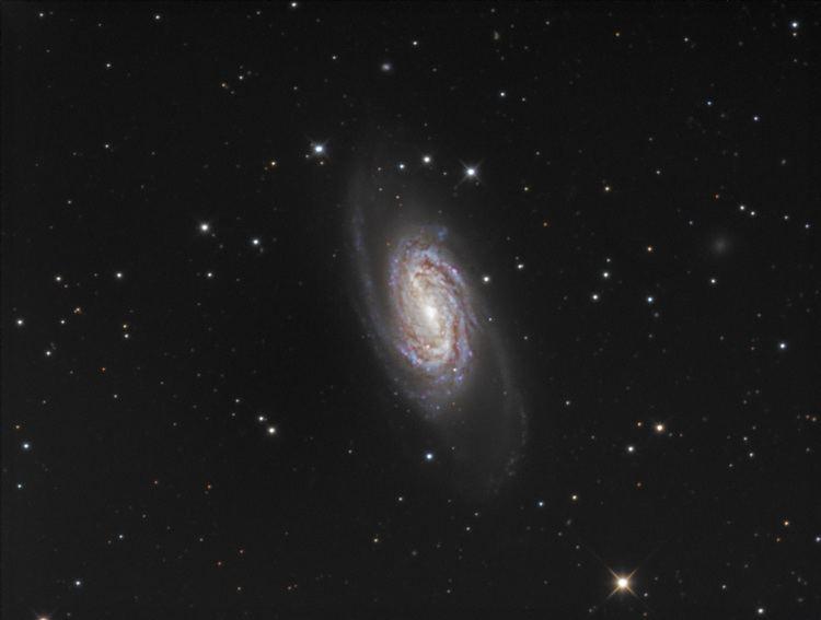 NGC 2903 Spiral galaxy NGC 2903 Astronomy Magazine Interactive Star