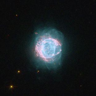 NGC 6884 httpsuploadwikimediaorgwikipediacommonsthu
