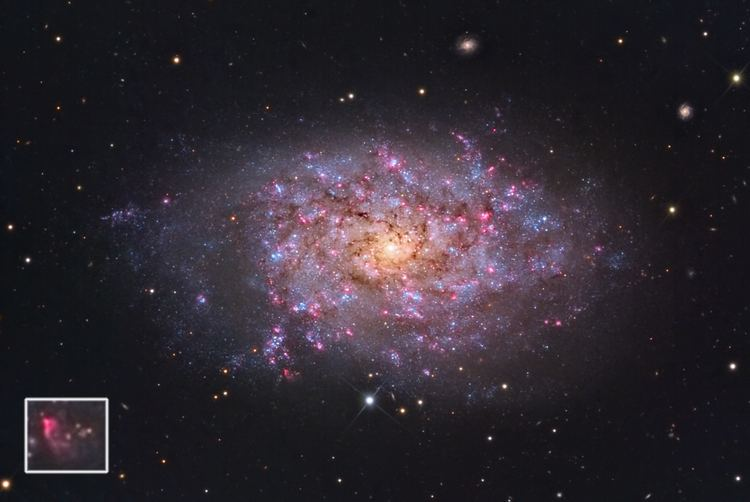 NGC 7793 Star Shadows Remote Observatory Gallery