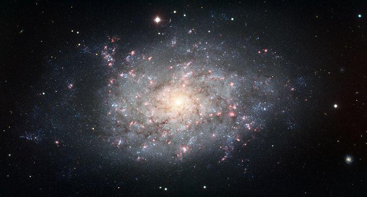 NGC 7793 Spiral galaxy NGC 7793 ESO