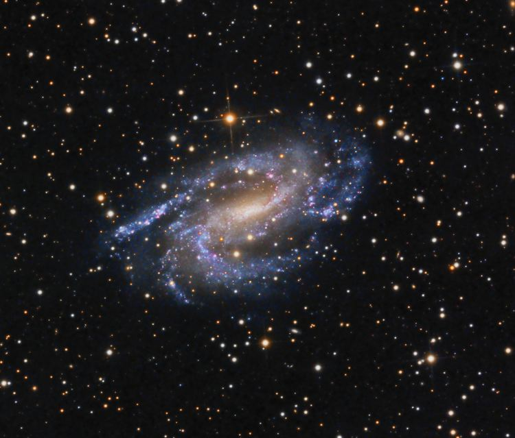 NGC 925 Barred spiral galaxy NGC 925 Astronomy Magazine Interactive Star