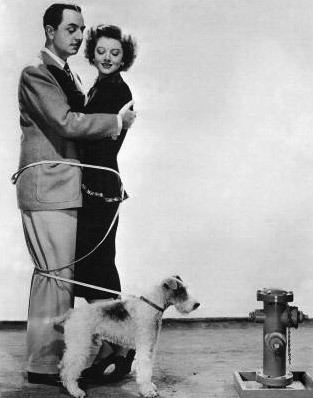 Nick and Nora Charles The Thin Man Film TV Tropes
