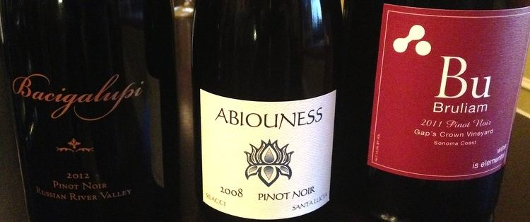 Nicole Abiouness Winery Visit Winemaker Focus Abiouness Wines Nicole Abiouness