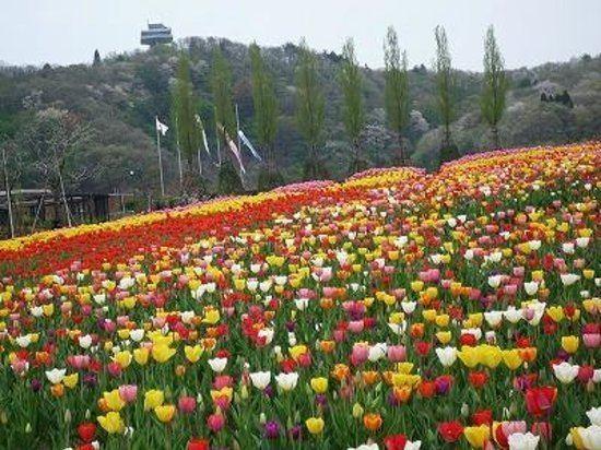 Niigata Prefecture Tourist places in Niigata Prefecture