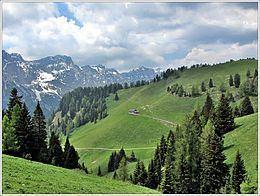Noana Valley httpsuploadwikimediaorgwikipediacommonsthu