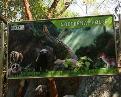 Nocturnal house Nandankanan has a nocturnal house now OdishaSunTimescom