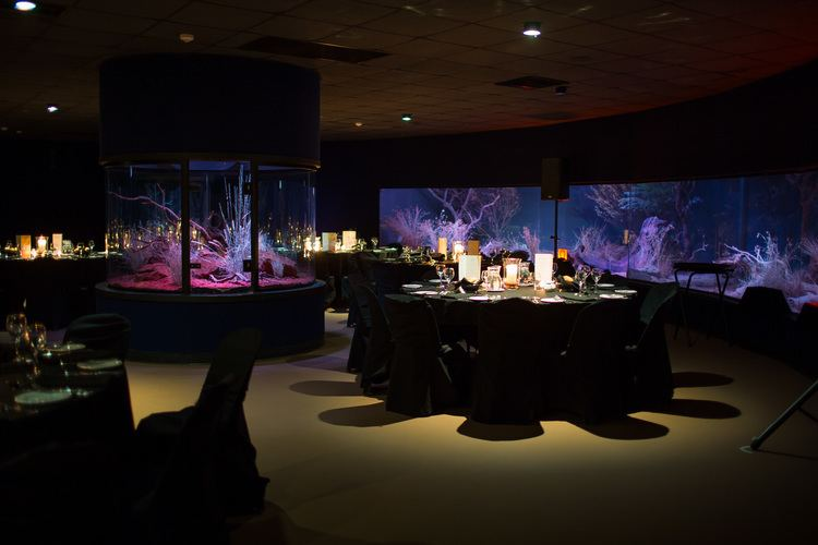 Nocturnal house Offsite Catering Portfolio Alice Springs Convention Centre