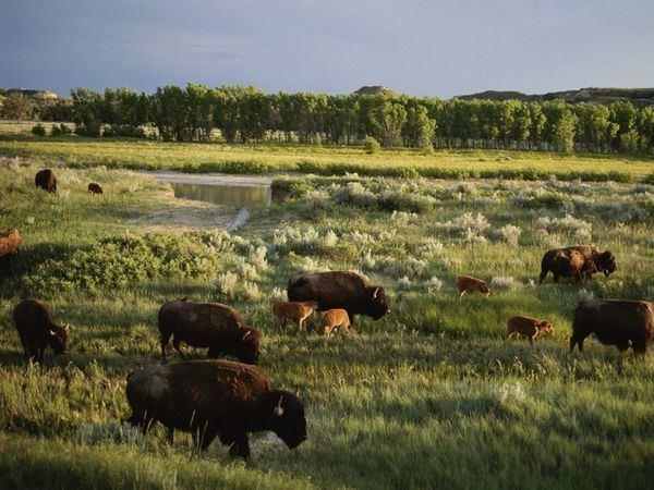 North Dakota Beautiful Landscapes of North Dakota