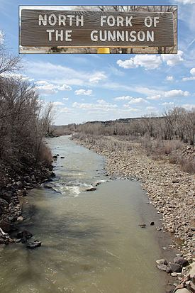 North Fork Gunnison River httpsuploadwikimediaorgwikipediacommonsthu