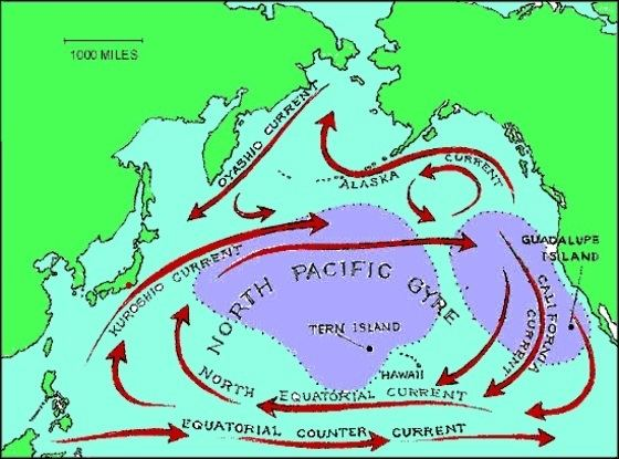 North Pacific Current - Alchetron, The Free Social Encyclopedia
