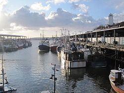 North Shields httpsuploadwikimediaorgwikipediacommonsthu
