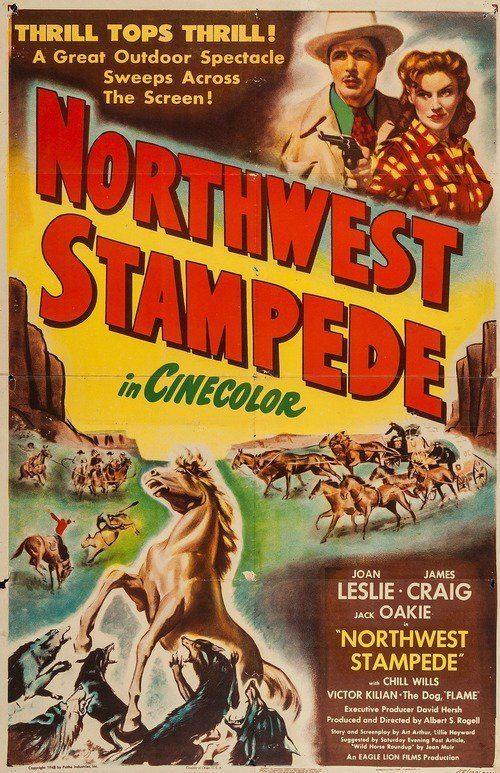 Northwest Stampede Northwest Stampede 1948 The Movie Database TMDb