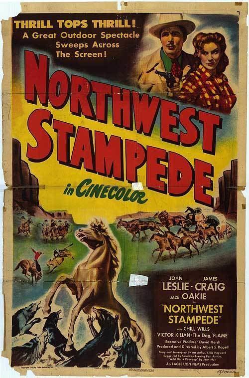 Northwest Stampede Northwest Stampede movie posters at movie poster warehouse