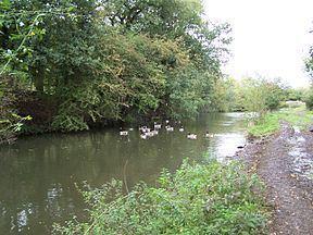 Nutbrook Canal httpsuploadwikimediaorgwikipediacommonsthu