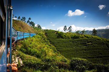 The Top 10 Things to Do in Nuwara Eliya 2017 Must See Attractions