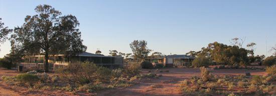 Oak Valley, South Australia maralingatjarutjacomimageshousingjpg