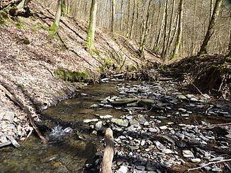 Obernau (Sieg) httpsuploadwikimediaorgwikipediacommonsthu