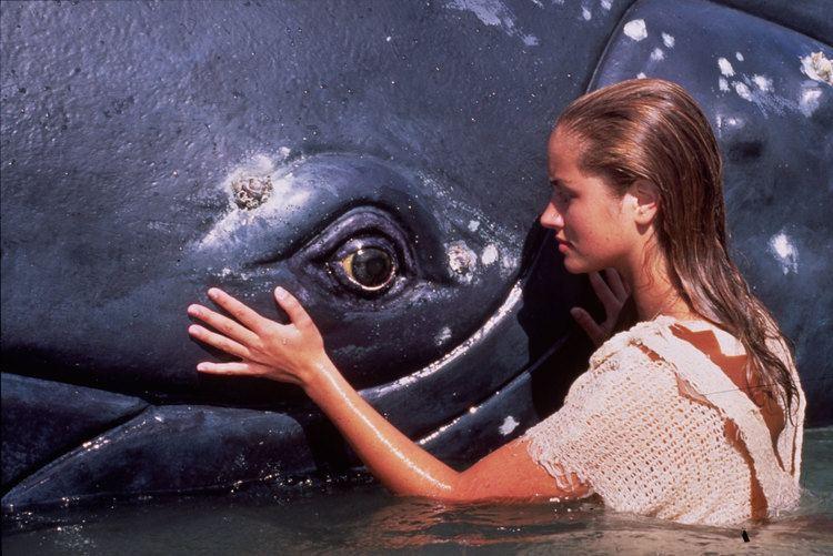 Ocean Girl 1000 images about 90stalgia Ocean Girl on Pinterest The 90s