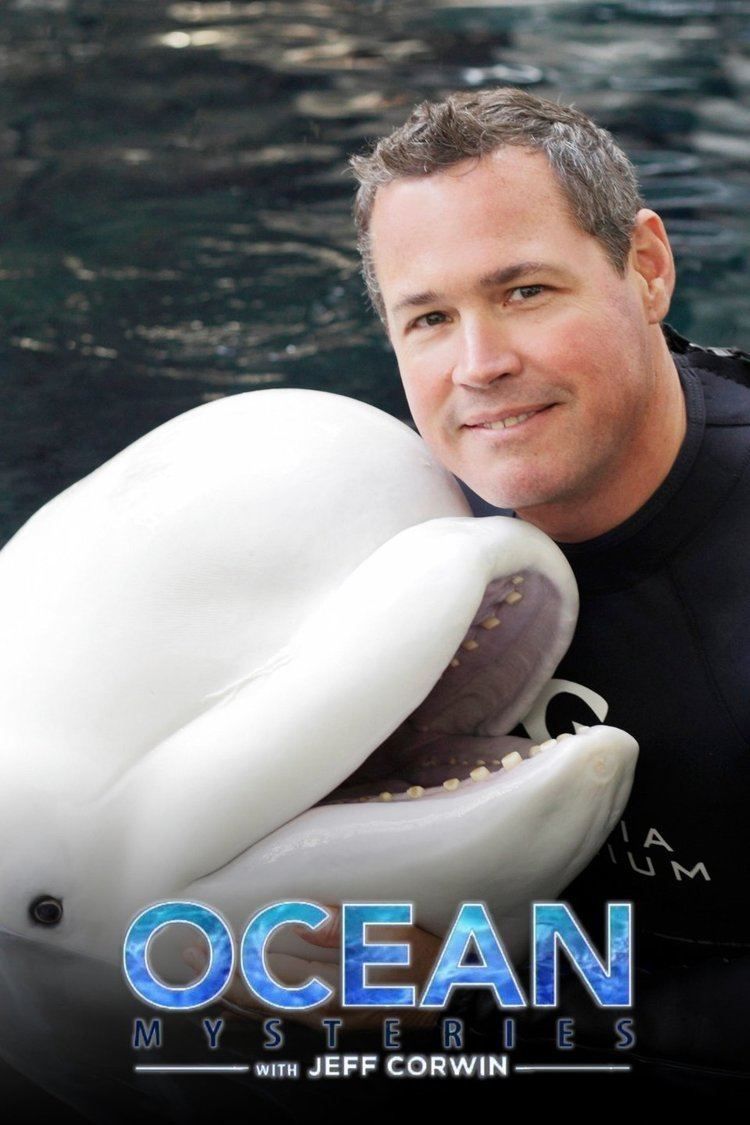 Ocean Mysteries with Jeff Corwin wwwgstaticcomtvthumbtvbanners8773596p877359