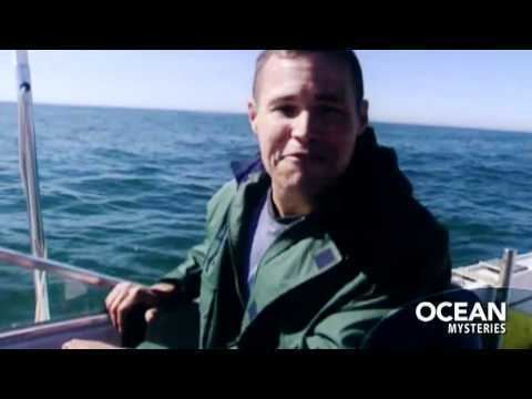 Ocean Mysteries with Jeff Corwin Ocean Mysteries with Jeff Corwin YouTube