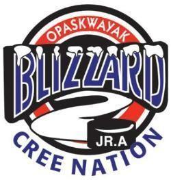 OCN Blizzard thepasonlinecomassetsimagesOCN20Blizzardjpg