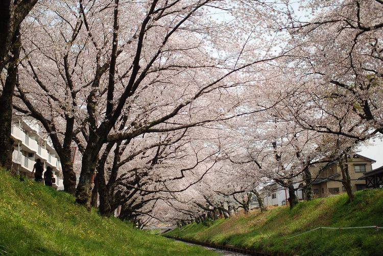Okazaki, Aichi in the past, History of Okazaki, Aichi
