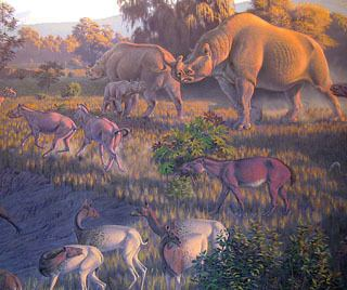 Oligocene History of Earth Oligocene Epoch Cenozoic Era