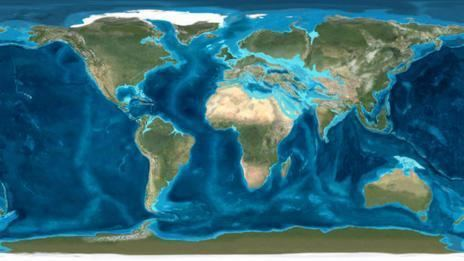 Oligocene BBC Nature Oligocene epoch videos news and facts