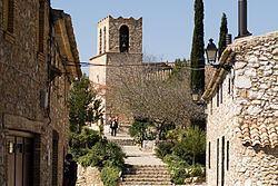 Olivella httpsuploadwikimediaorgwikipediacommonsthu