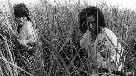 Onibaba (film) Onibaba 1964 The Criterion Collection
