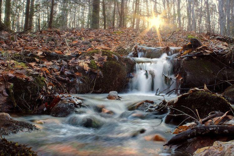 Ontelaunee Creek httpsc1staticflickrcom4378213344520804dc3