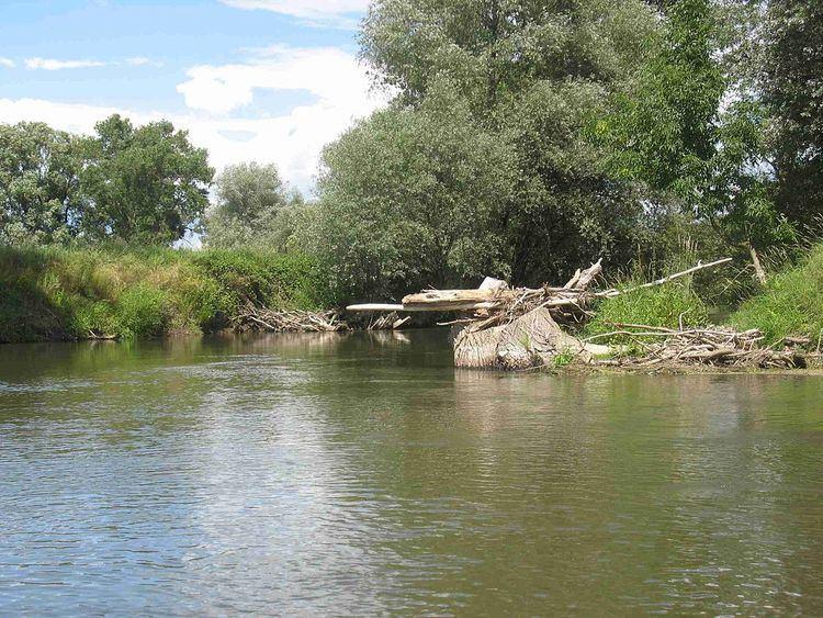 Opava (river) httpsuploadwikimediaorgwikipediacommonsthu