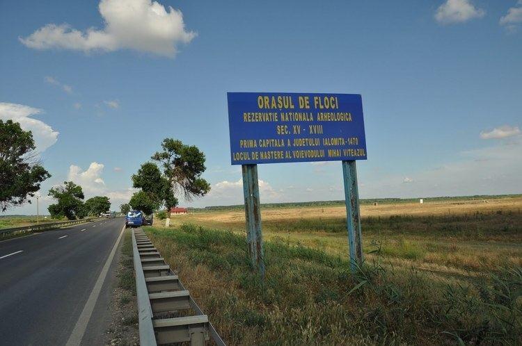 Orașul de Floci Stelian Muscalu un blog despre abuzuri si fotografie Orasul de